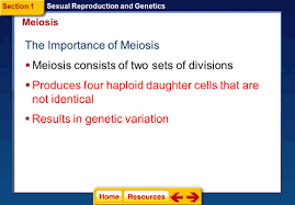 click on a lesson name to select section 1 meiosis section 2