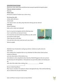 active transport worksheets by katieball teaching resources tes