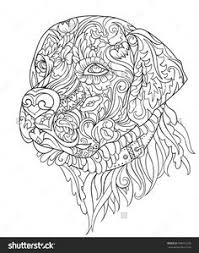 harmony nature coloring book pg 1 color pages stencils