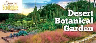 Scottsdale Botanical Gardens Desert Botanical Garden The Central Park Of The Desert