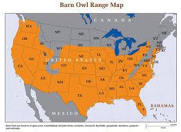 Where Does The Barn Owl Live Barn Owl Biology Natural History Barn Owl Box Company