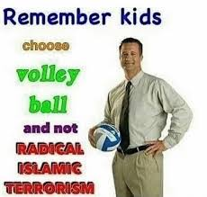 Volleyball Meme - always choose volleyball the meme renaissance of me irl the