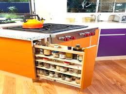 kitchen spice organization ideas spice cabinet ideas organized kitchen cabinet for spices before