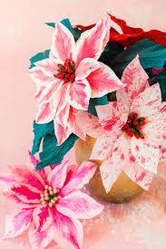 best 25 poinsettia flower ideas on pinterest silverware holder