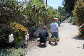 todaysmama com san diego botanical garden