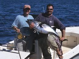 fishing wellfleet massachusetts new england boating u0026 fishing