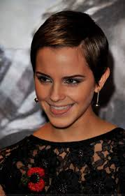 71 best hairdos images on pinterest hairstyles short hair and hair