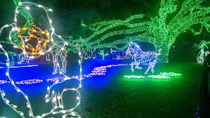 zoo lights houston prices sugar land holiday lights zoo lights 2014 engulfed