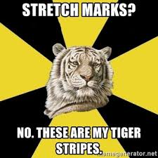 Stretch Marks Meme - stretch marks no these are my tiger stripes wise tiger meme