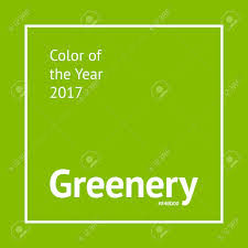 color of the year 2017 fashion greenery color sle trendy fashion color of the year 2017 stock