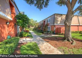 One Bedroom Apartments In Tampa Fl Palma Ceia Apartments Tampa Florida Mckinley