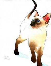 best 25 siamese cat tattoos ideas on pinterest black siamese