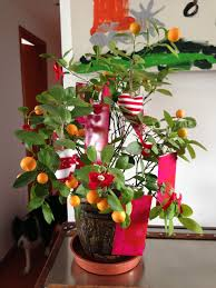 most beautiful artificial new year trees best 25 small artificial