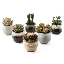 ceramic flowing succulent plant pot cactus container planter set
