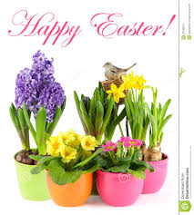 fresh spring flowers with birds nest easter royalty free stock