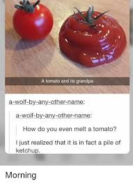 Tomato Meme - a tomato and its grandpa a wolf by any other name a wolf by any