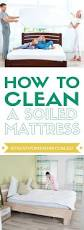 how to clean a soiled mattress stay at home mum