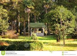 Summer House In Garden - house in garden stock photo image 49738226