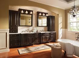 Wood Bathroom Medicine Cabinets With Mirrors by Bathroom Cozy Wooden Bathroom Bertch Cabinets In Black With