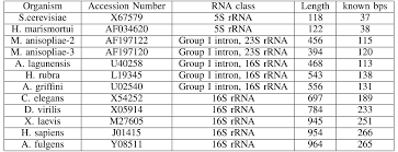 rna secondary structure prediction using soft computing