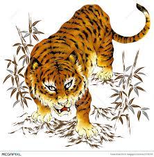japanese tiger illustration 42379233 megapixl
