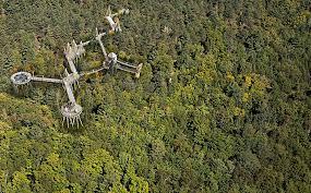 take a walk across the treetops adventure journal