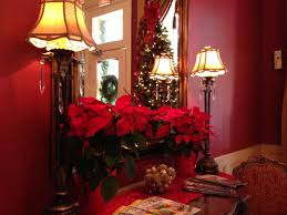 collection christmas tree pictures to download home merry free