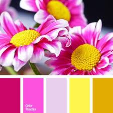 Yellow Color Combinations 63 Best Color Palettes Images On Pinterest Colors Color