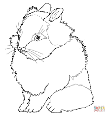 lionhead rabbit coloring free printable coloring pages