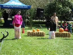 three fun ideas for fall company picnics windy city fieldhouse