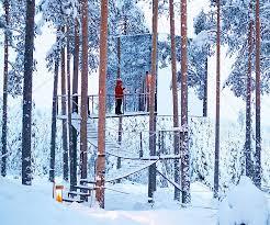 cube treehouse rental