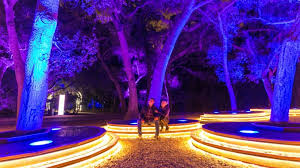 enchanted forest of light tickets enchanted forest of light review a magical evening at descanso