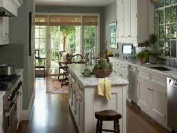 Best Kitchen Paint Colors With White Cabinets by Paint Gold Interior Design