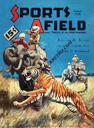 tiger fine art print safari animal print elephant print