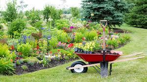 giardini rocciosi in ombra 10 piante da giardino come scegliere quelle giuste