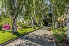 increase your home u0027s value with mature trees hgtv