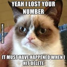 Telephone Meme - i lost your number cat grumpy lost meme number telephone