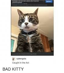 Bad Kitty Meme - is set up to take alpicture after 3 incorrect password attempts