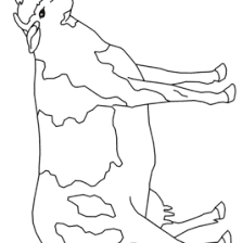 coloring page cow kids drawing and coloring pages marisa
