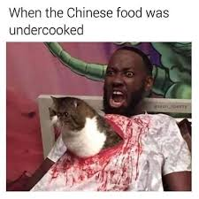 Meme China - aahhhhhh do they really cook cats in china meme by cerebrix92