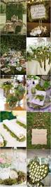 Table Decoration Ideas Videos by Best 10 Succulent Table Decor Ideas On Pinterest Succulent