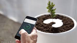 bios urn firm reveals smart incubator bios urn to turn your loved one s