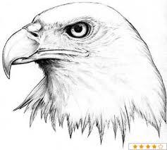 animal tattoo images u0026 designs