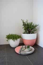 diy large concrete planter l succulent planter