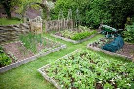 self sustaining garden resources to help you become more self sufficient