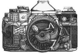 image gallery sketch camera