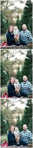 christmas tree farm with a red chevy truck family portraits