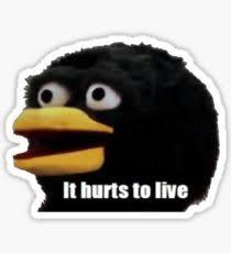 Meme Bird - bird meme stickers redbubble