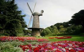 Botanical Gardens Golden Gate Park by Dutch Windmill Golden Gate Park