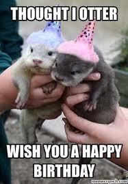 Cute Birthday Meme - image result for birthday meme cute pinterest birthdays